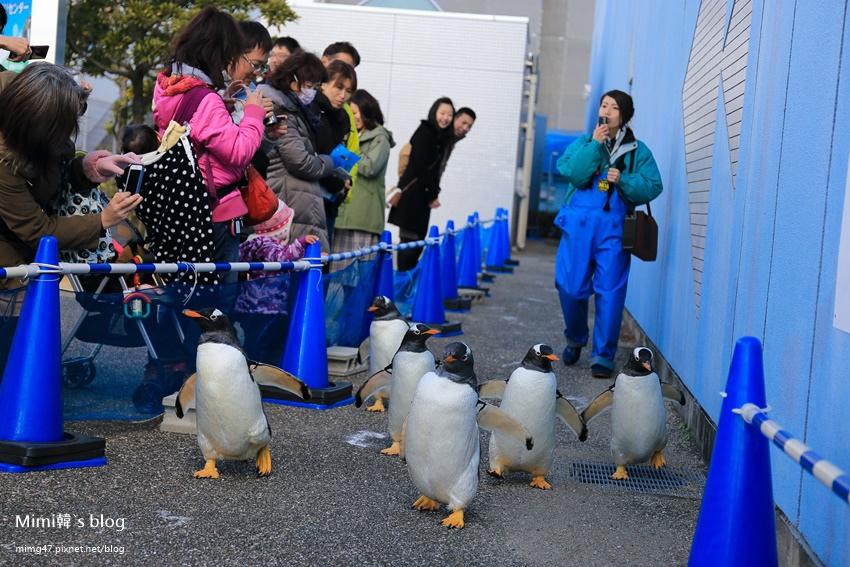 名古屋水族館-25.jpg