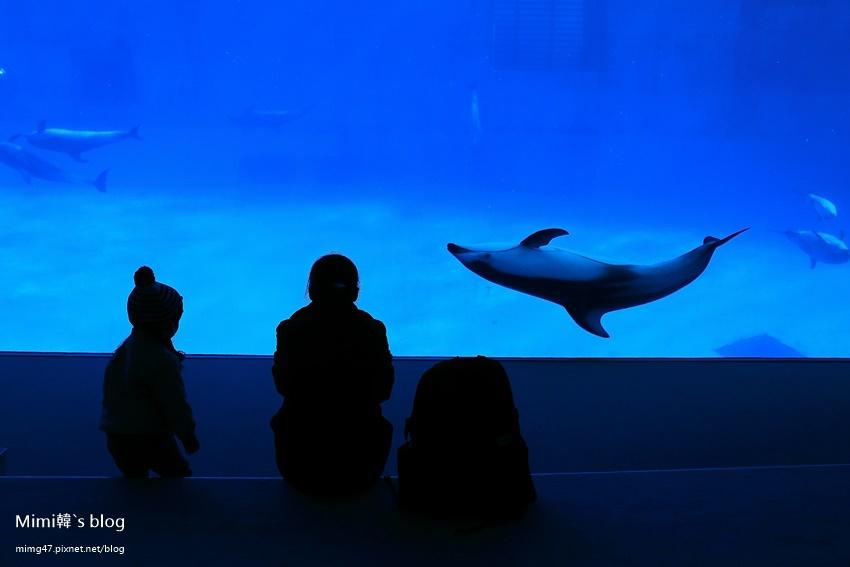 名古屋水族館-34.jpg