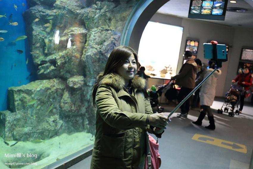 名古屋水族館-38.jpg