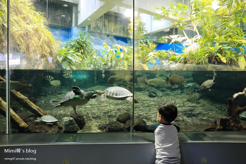 名古屋水族館-49.jpg