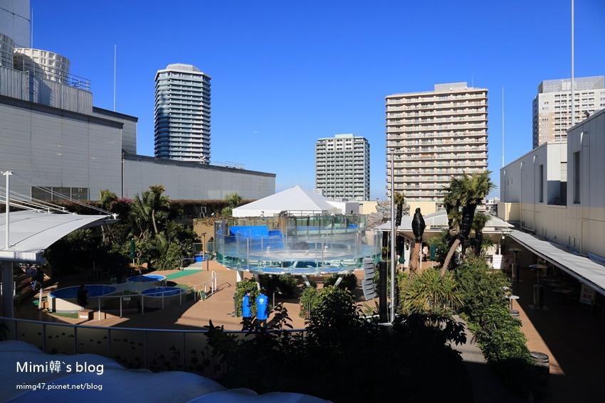 池袋太陽城水族館-13.jpg