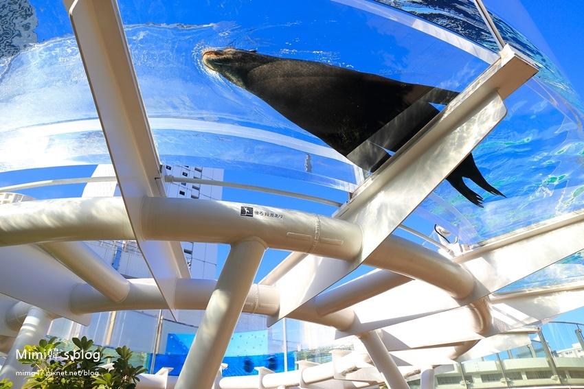 池袋太陽城水族館-15.jpg