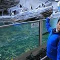池袋太陽城水族館-20.jpg