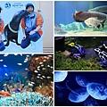 池袋太陽城水族館-22.jpg