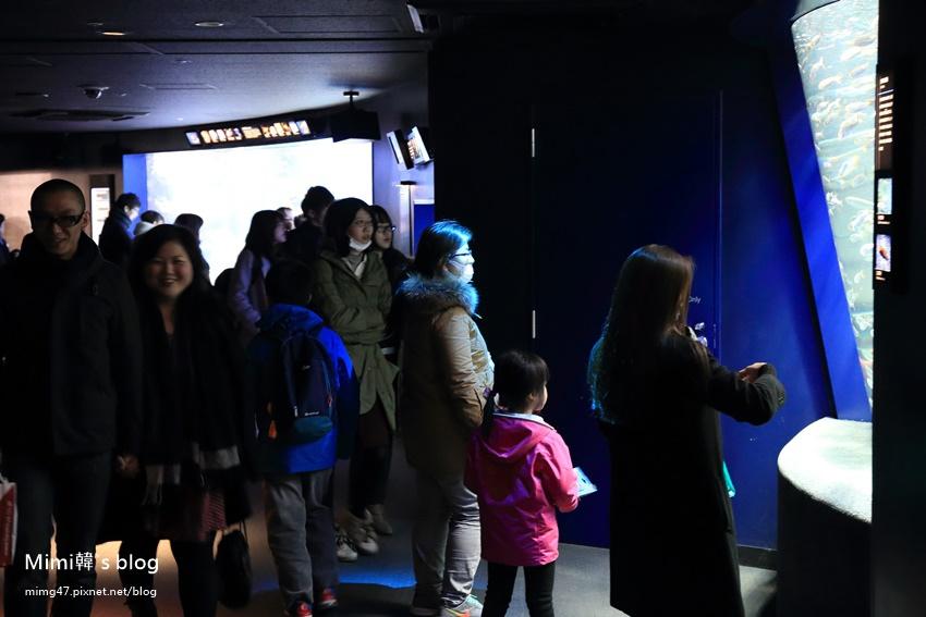 池袋太陽城水族館-25.jpg