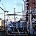 荒川遊園地-35.jpg