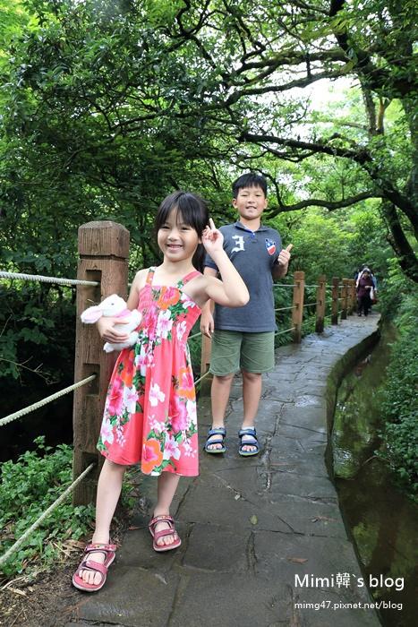 竹子湖繡球花-5.jpg