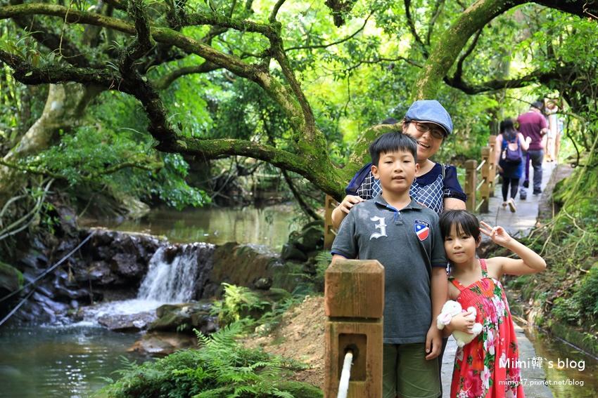 竹子湖繡球花-6.jpg