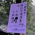 竹子湖繡球花-8.jpg