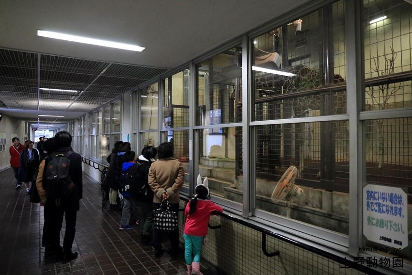 上野動物園-31.jpg