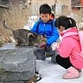 蘆之湖-25.jpg