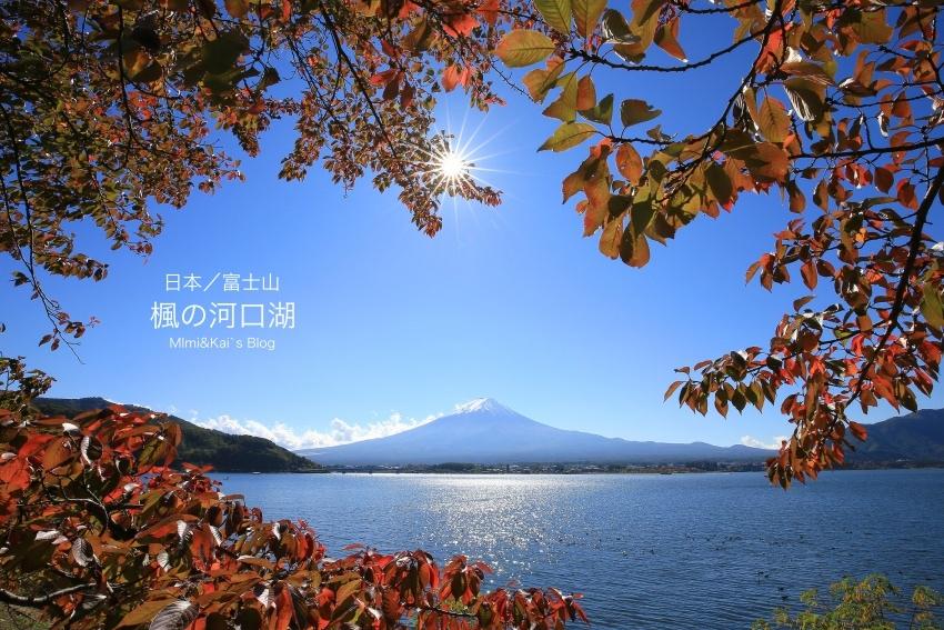 IMG_76881.jpg