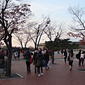 2011119-20 791.jpg