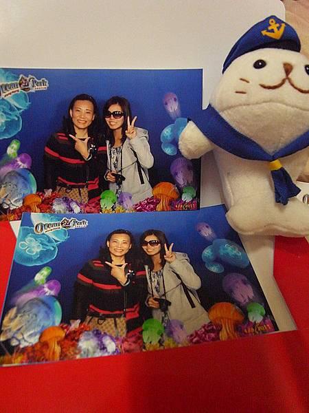在香港海洋公園水母館拍的唷!旁邊那隻因為有海錨所以買了牠!哈。