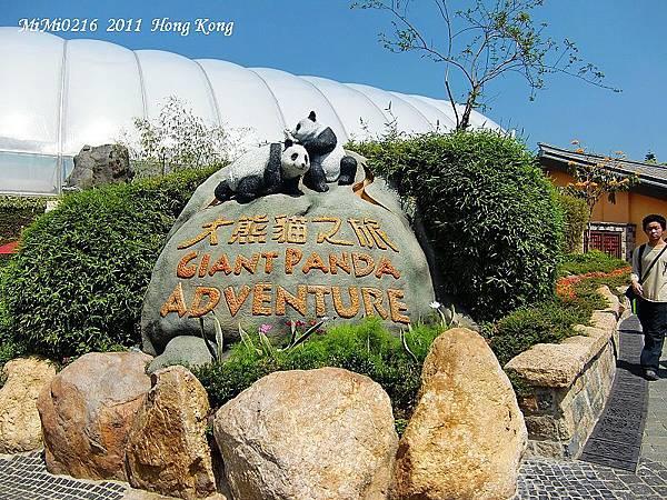來看熊貓嘍!