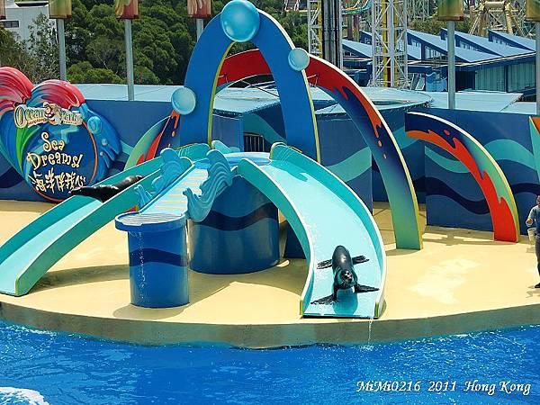 海獅流滑梯。