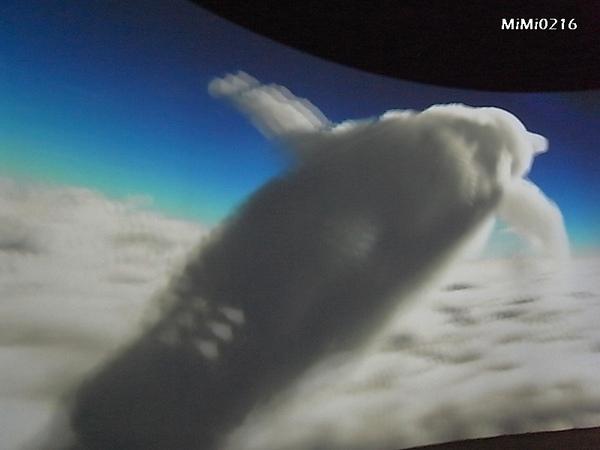 海豚的雲。