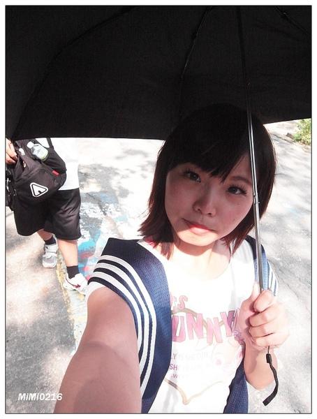 洋傘必備的。