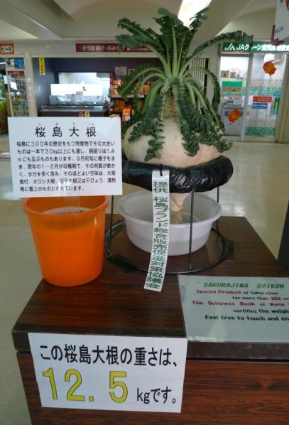 20120210 鹿兒島 櫻島渡輪-5
