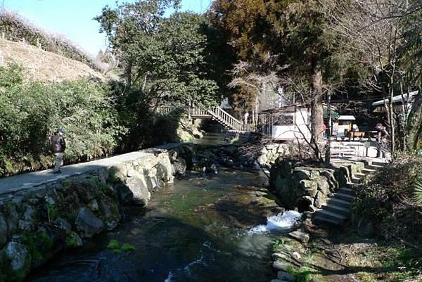 20120212 南阿蘇 白川水源-9