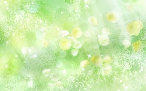[wallcoo_com]_CG_Widescreen_Flowers_HS010_350Aa.jpg