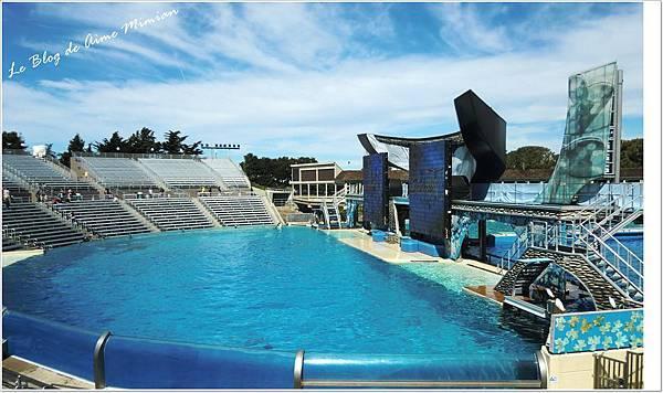 SanDiego-SeaWorld - 06.jpg