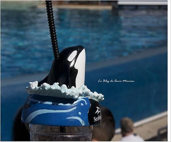 SanDiego-SeaWorld - 10.jpg