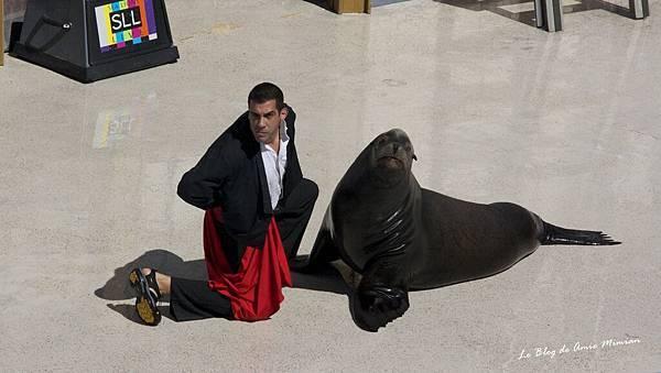 SanDiego-SeaWorld - 18.jpg