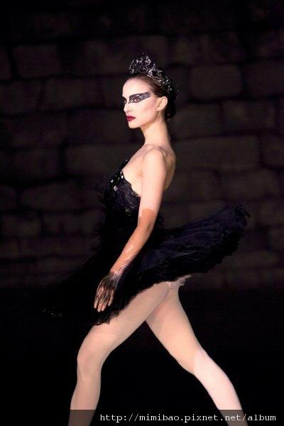 Black Swan01.jpg