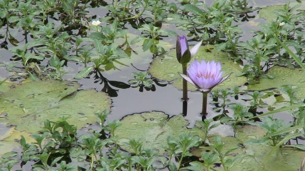 2007/09/22~2007/09/24 花蓮之旅