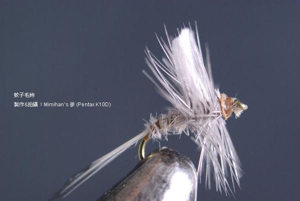 Fly Fishing~蚊子毛鉤