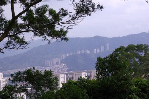 2008/12/06 承天寺、天上山、五城山、文筆山、彩蝶社區、南勢角山