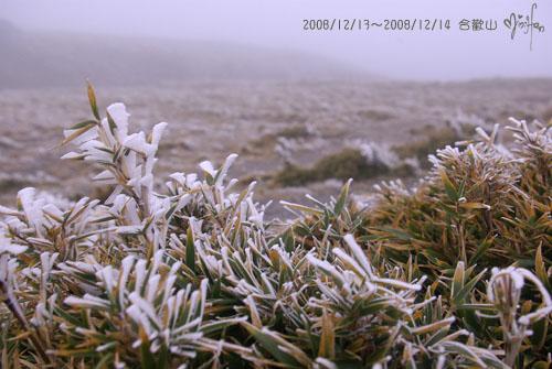 2008/12/13~2008/12/14 合歡山百岳登山行