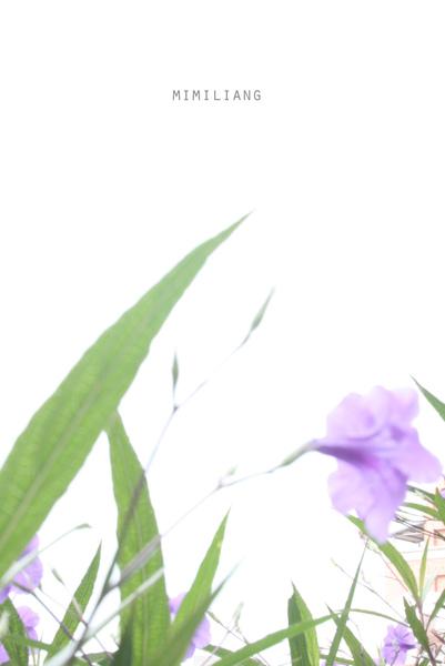 IMG_2950副本.jpg