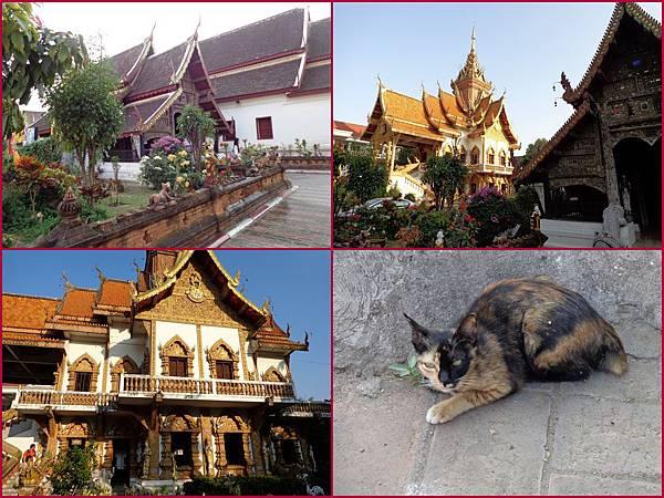 Chiang Mai20