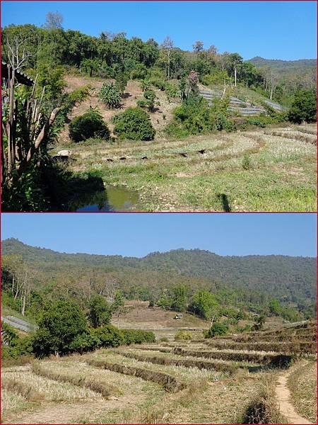 Chiang Mai26
