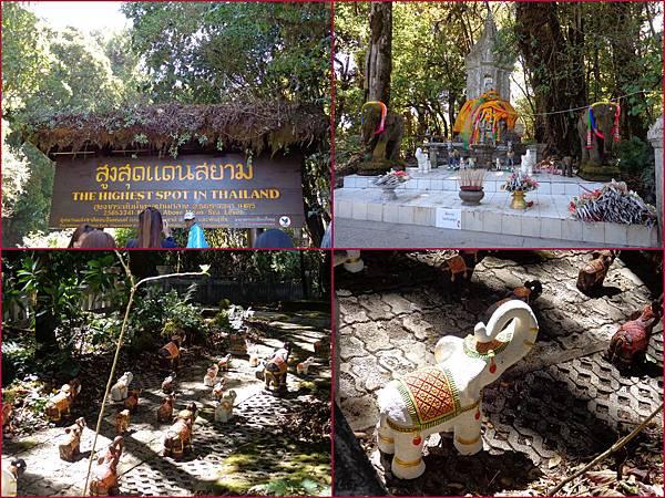 Chiang Mai31
