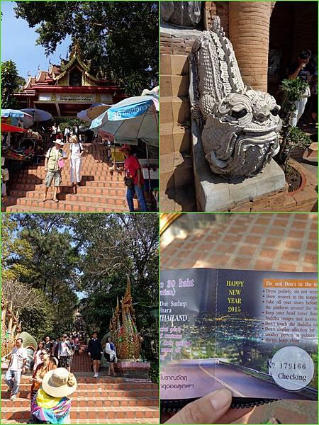 Chiang Mai65