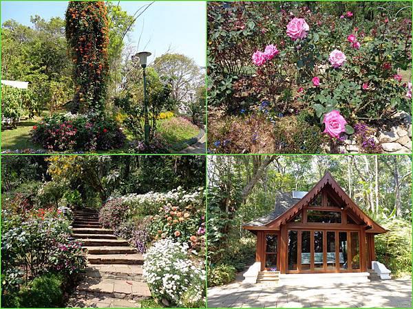 Chiang Mai62