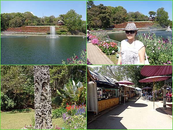 Chiang Mai64