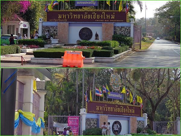 Chiang Mai73