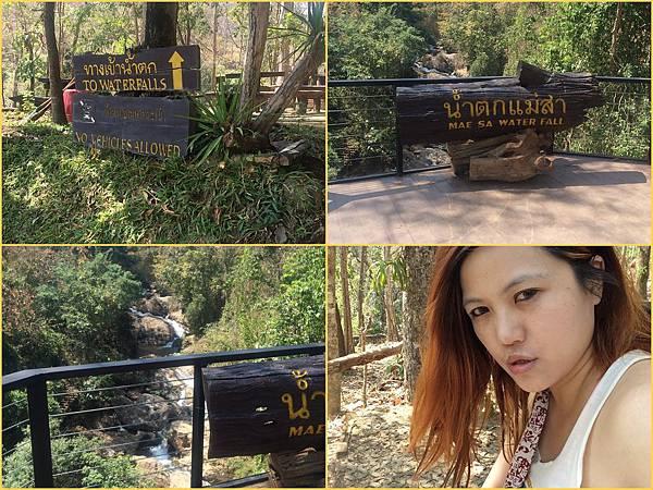 Chiang Mai11