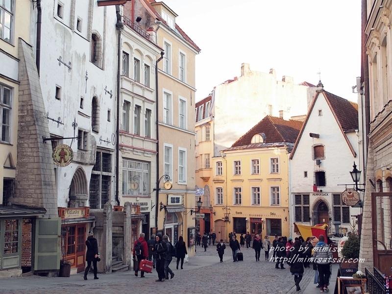 愛沙尼亞 塔林 旅遊 (15)