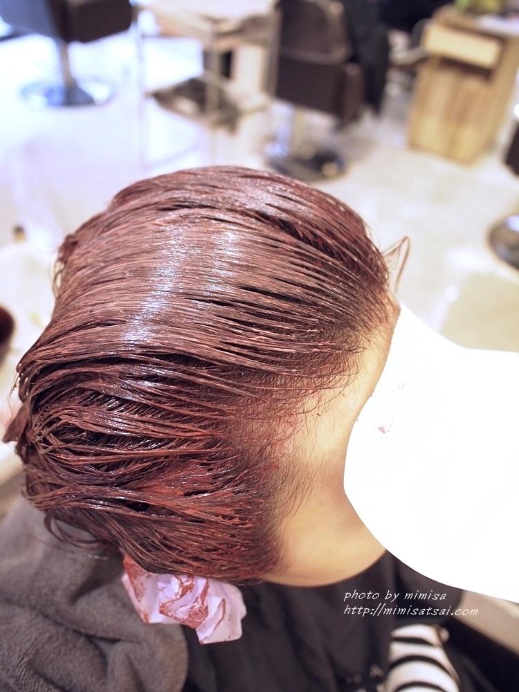 Happy Hair 染髮 (10)
