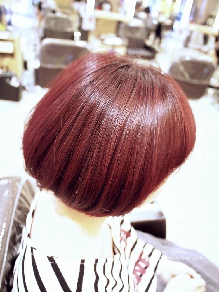 Happy Hair 染髮 (12)