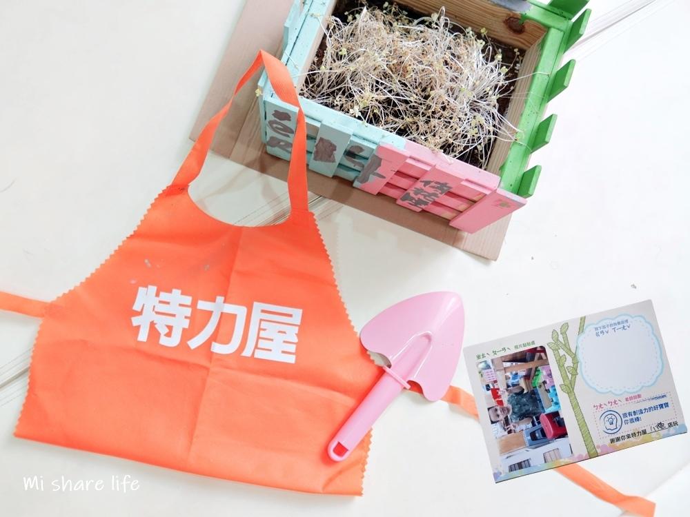 特力屋小小園藝師 (17).jpg