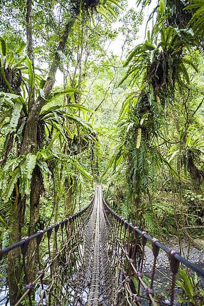 步道吊橋 拷貝.jpg