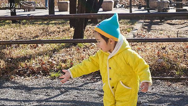公園玩耍的小孩 拷貝.jpg
