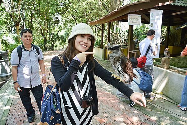 吉隆坡鳥園-15 拷貝.jpg