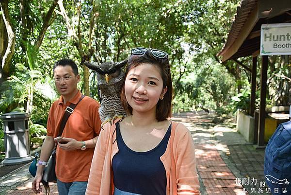 吉隆坡鳥園-16 拷貝.jpg